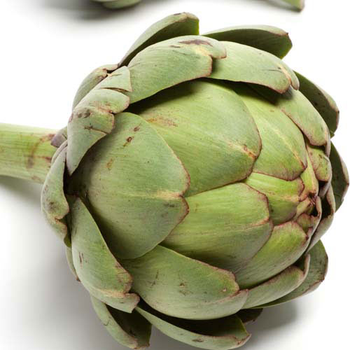 Answer ARTICHOKE