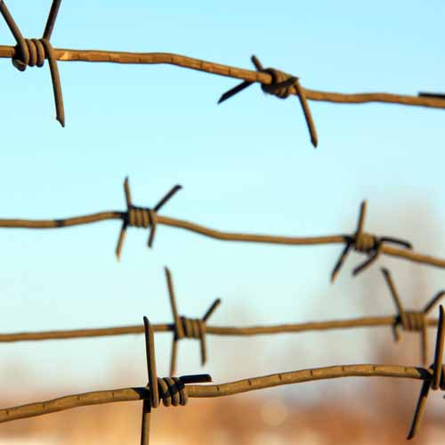 Answer BARBED WIRE