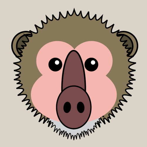 Answer BABOON