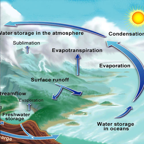 Answer WATER CYCLE