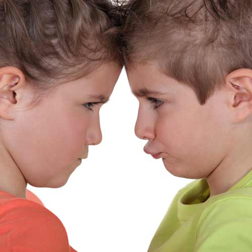 Answer SIBLING RIVALRY