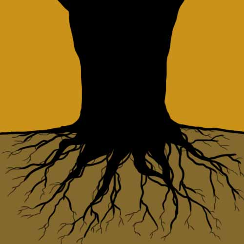 Answer THE ROOTS