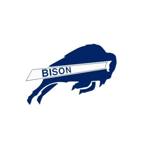 Answer BISON