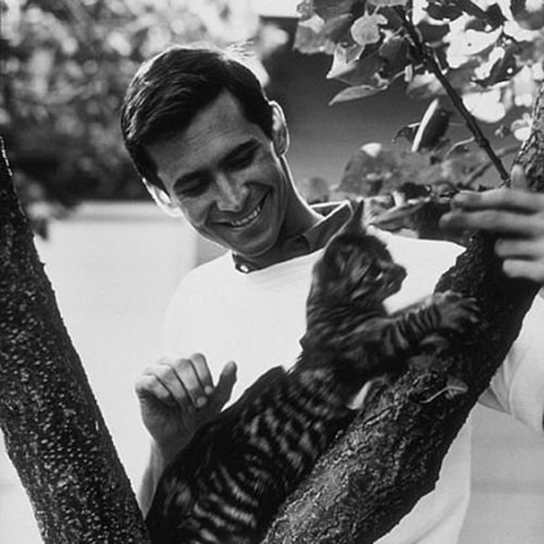 Antwort ANTHONY PERKINS