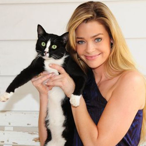 Antwort DENISE RICHARDS